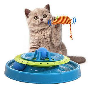 Αξεσουάρ Γάτας