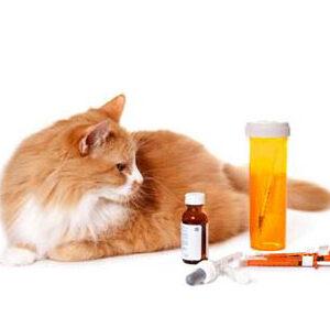 Βιταμίνες και Αντιπαρασιτικά